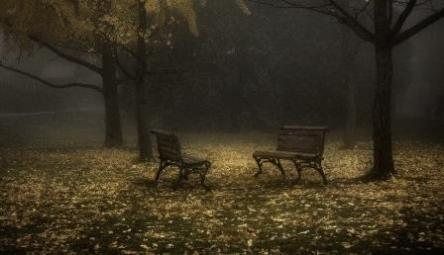 Autumn nostalgia